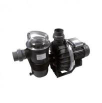 Pompe de filtration Challenger Pentair C'line
