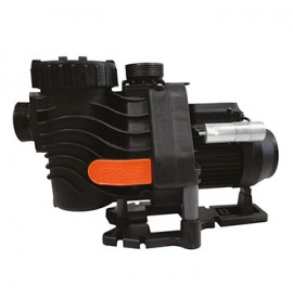 Pompe de filtration Badu Easyfit Standard Speck Pumpen