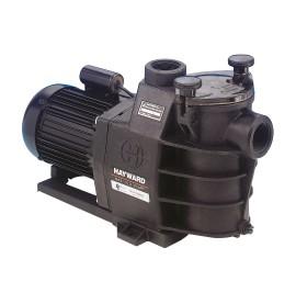 Pompe de filtration Max-Flo Hayward