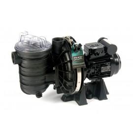 Pompe de filtration Sta-Rite 5P2R