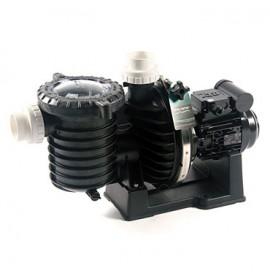 Pompe de filtration mono 5P6R Sta-Rite